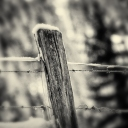 snow over fences