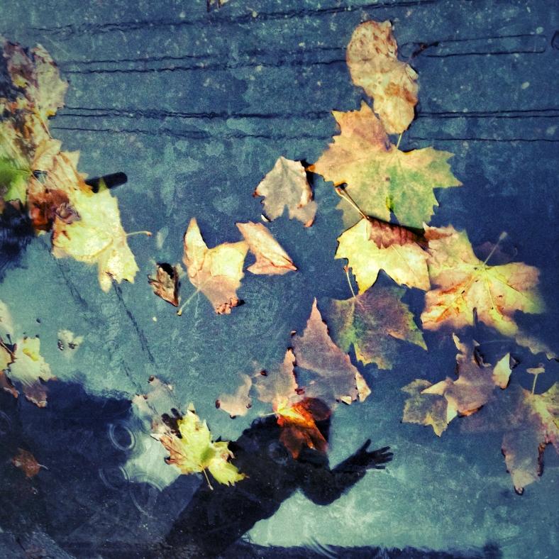 fall games~ Shanghai