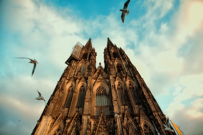 birds circling Cologne Cathedral~ Germany