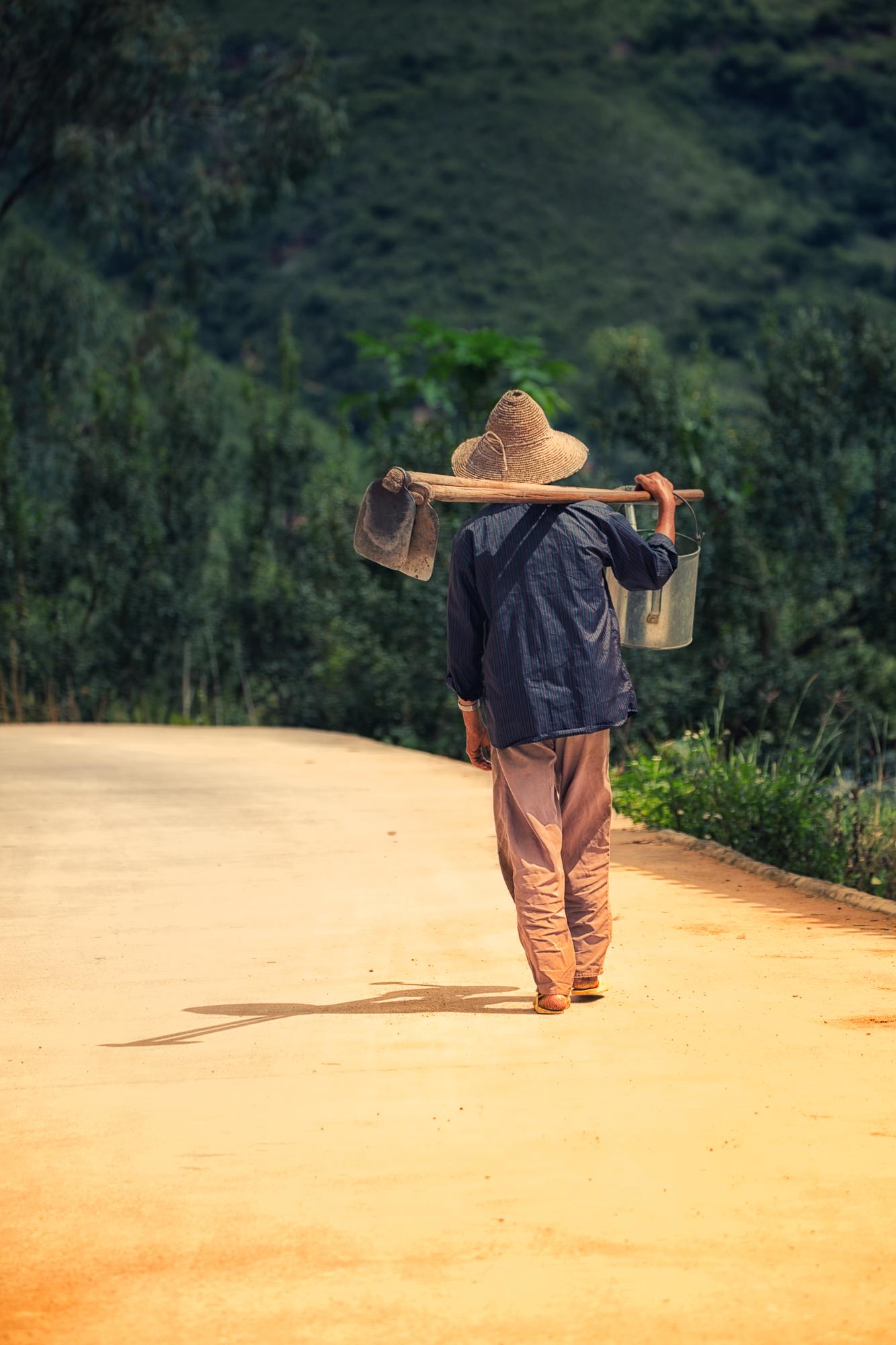 field of dreams~ Yunnan